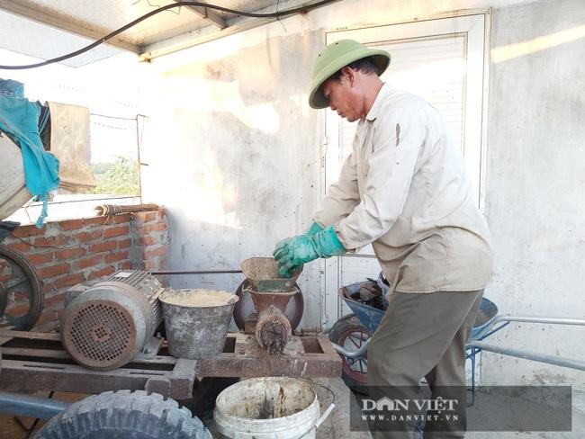 Hà Nội: Cho ba ba gai sống chung với cá chuối hoa, ông nông dân này nuôi nhàn tênh, bán giá nửa triệu đồng/kg - Ảnh 6.