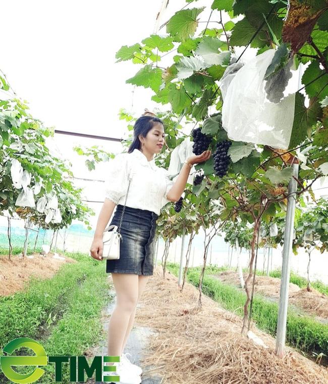 9X trồng cây ra từng chùm quả to bằng ngón tay cái, người dân tò mò đến xem - Ảnh 4.