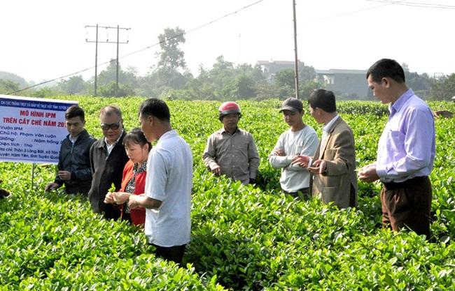 Trên 2 triệu ha áp dụng IPM, Bộ NNPTNT ban hành chỉ thị mở rộng triển khai trên các cây trồng chủ lực - Ảnh 1.