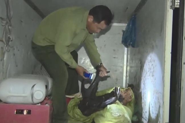 Cà Mau: Một con nai rừng 150kg bị xẻ thịt trộm - Ảnh 1.