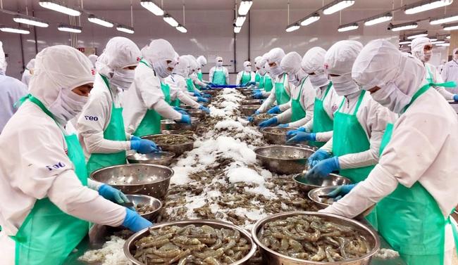 Kiên Giang: Thay đổi thói quen canh tác, nông dân thu lãi khủng từ con tôm - Ảnh 3.