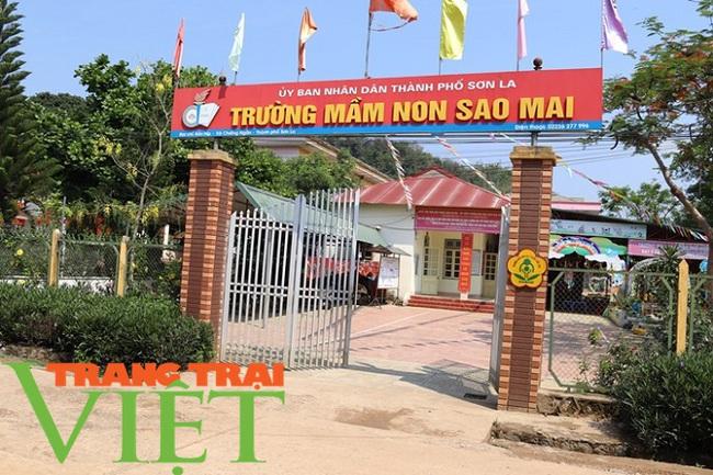 Chiềng Ngần gìn giữ và phát huy các tiêu chí nông thôn mới - Ảnh 4.