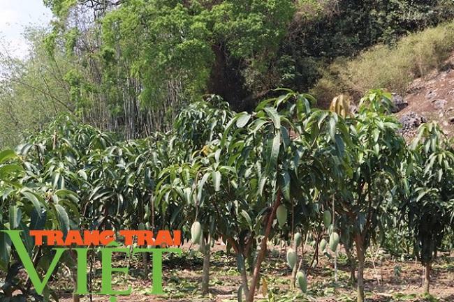 Chiềng Ngần gìn giữ và phát huy các tiêu chí nông thôn mới - Ảnh 6.