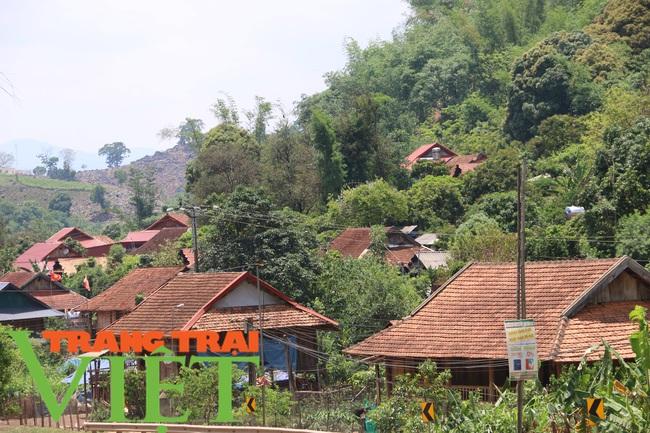 Chiềng Ngần gìn giữ và phát huy các tiêu chí nông thôn mới - Ảnh 2.