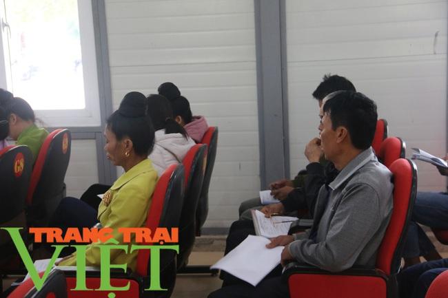 Hội Nông dân Sơn La: Tập huấn kiến thức pháp luật cho hội viên - Ảnh 4.
