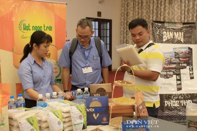 Gạo Việt Nam xuất khẩu vào EU chỉ bằng 1/6 so với Thái Lan, thấp hơn cả Campuchia - Ảnh 1.