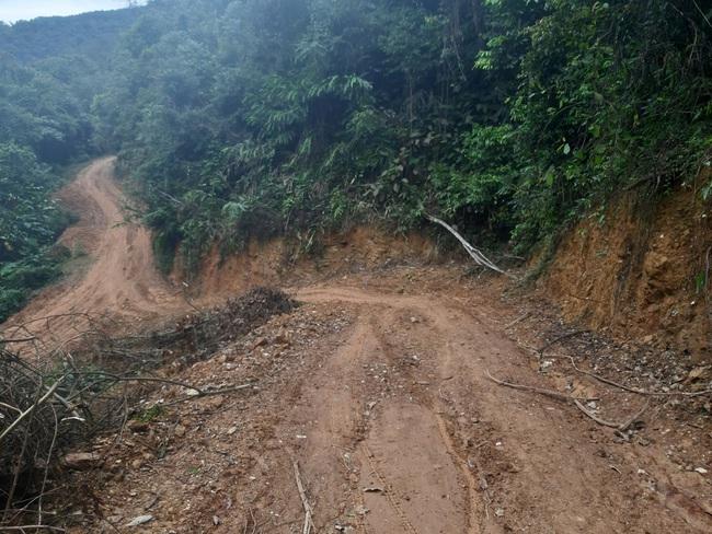 Mở 2,4km đường trái phép vào phá rừng tự nhiên ở Bắc Kạn: Giao Công an điều tra vụ việc - Ảnh 1.