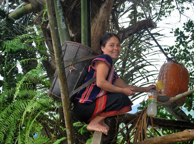 """Về Quảng Nam xem """"nấu rượu"""" trên cây! - Ảnh 1."""
