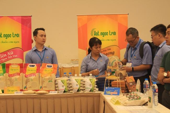 Đi tìm thứ hạng gạo Việt - Ảnh 3.