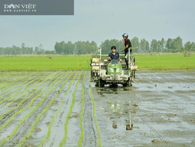 Kiên Giang: Cơ giới hóa mở lối cho nông dân tăng thu nhập - Ảnh 1.