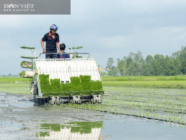 Kiên Giang: Cơ giới hóa mở lối cho nông dân tăng thu nhập - Ảnh 2.