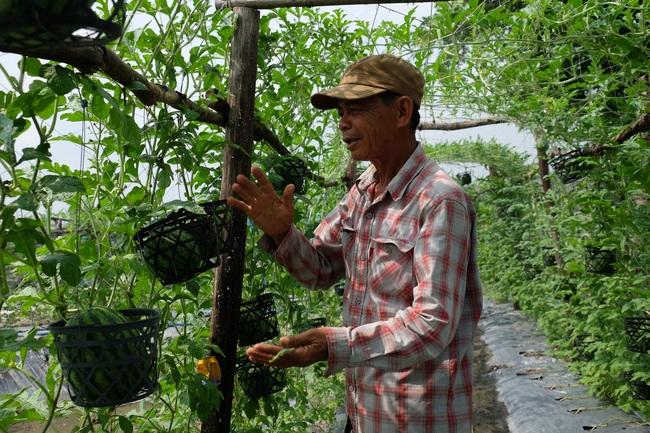 10 năm nữa Đồng Nai có thành quả gì trong nông nghiệp nhờ ứng dụng công nghệ của Israel - Ảnh 1.