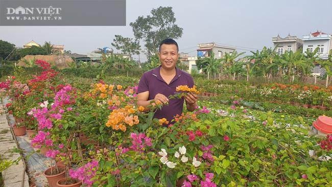 Thái Bình: Trồng bạt ngàn hoa, cây cảnh trên ruộng trũng bỏ hoang, 8x có cơ ngơi tiền tỷ - Ảnh 4.