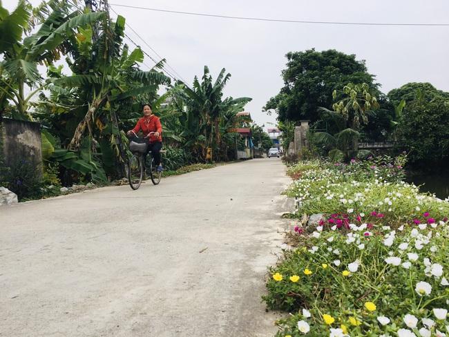 Hà Nam hoàn thành nhiệm vụ xây dựng nông thôn mới - Ảnh 1.