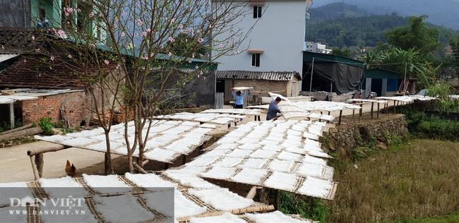 Từ củ dong riềng đến sản phẩm OCOP chủ lực của Quảng Ninh - Ảnh 7.