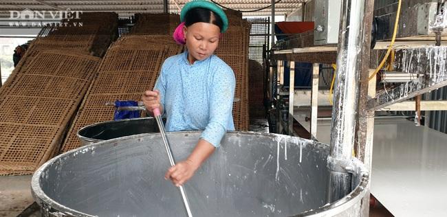 Từ củ dong riềng đến sản phẩm OCOP chủ lực của Quảng Ninh - Ảnh 4.