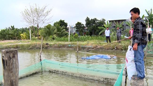 An Giang: Thả 1.500 con cá nàng hai trong vèo, bên ngoài thả thêm 2.000 cá sặc rằn, ông nông dân lãi khá - Ảnh 3.