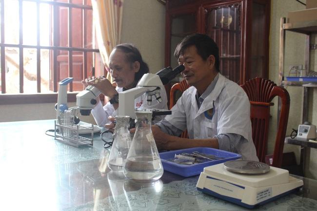 Thăm trang trại cung cấp tôm, cá sạch, thương lái mê tít cho thu hoạch tiền tỷ mỗi năm của lão nông Nam Định - Ảnh 4.