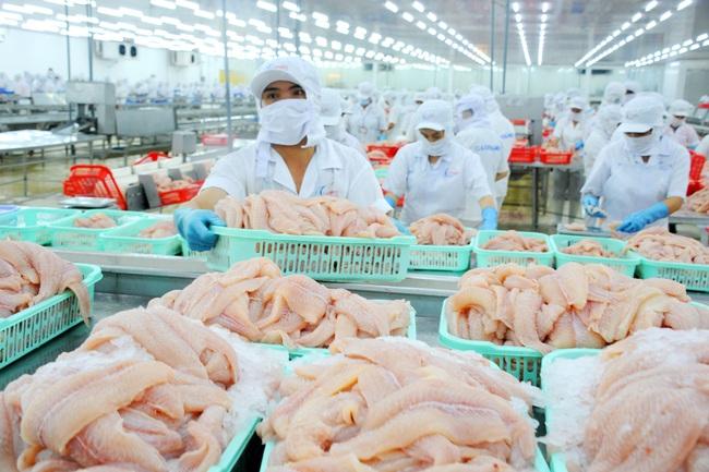 Xuất khẩu cá tra sang Trung Quốc: Vừa khởi sắc đã gặp khó - Ảnh 1.
