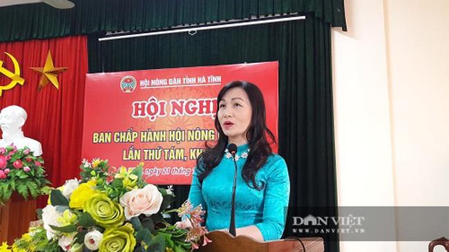 Hà Tĩnh có tân Chủ tịch Hội nông dân tỉnh - Ảnh 1.