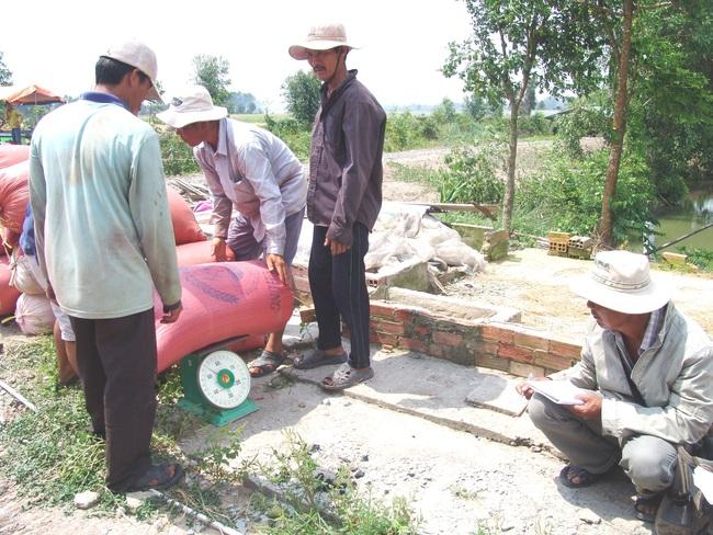 Sau 5 năm tái cơ cấu ngành hàng lúa gạo, lợi nhuận nông dân trồng lúa đạt 75% - Ảnh 3.