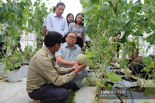 4 huyện nào của tỉnh Hà Tĩnh thực hiện dự án Nông nghiệp thông minh? - Ảnh 3.