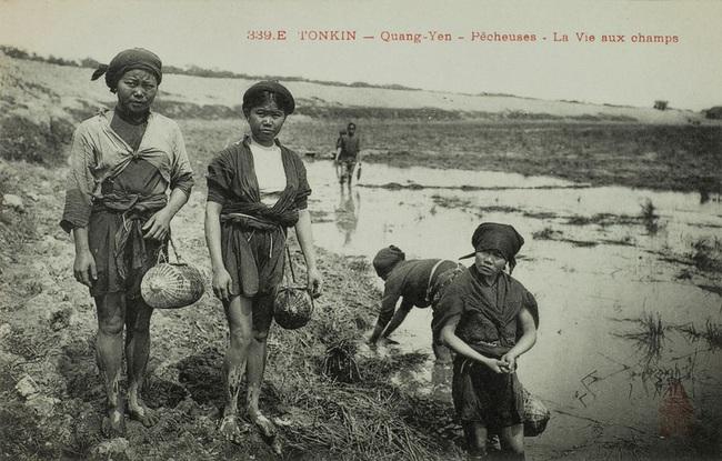 Nghề xẻ gỗ, cắt tóc của người Việt xưa - Ảnh 7.