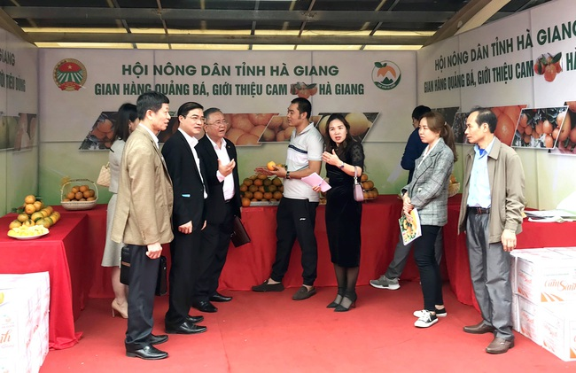 Quảng Ninh hỗ trợ xúc tiến, kết nối tiêu thụ sản phẩm cam sành Hà Giang - Ảnh 2.