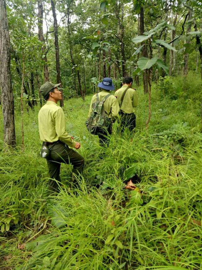 """Thứ trưởng Bộ NNPTNT Hà Công Tuấn: Đóng cửa rừng tự nhiên không có nghĩa là """"rào kín"""" - Ảnh 2."""