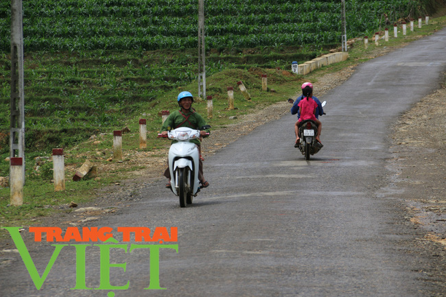 Vân Hồ: Khi nhân dân đồng lòng xây dựng nông thôn mới - Ảnh 8.