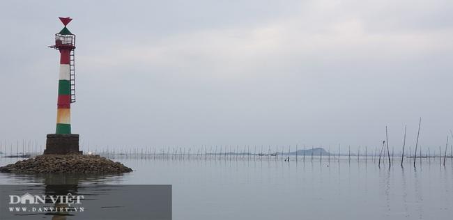 Bát canh ngao mặn chát trên biển Hải Hà - Ảnh 2.