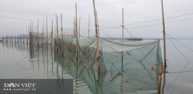 Bát canh ngao mặn chát trên biển Hải Hà - Ảnh 1.