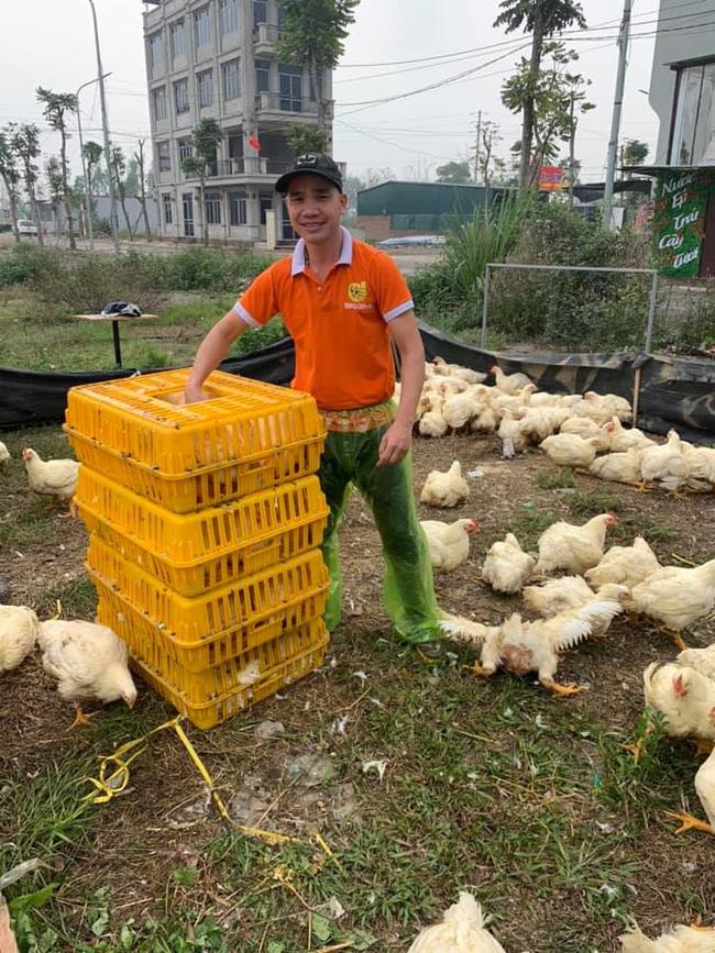 Giá gia cầm hôm nay 4/12: Giá gà thịt công nghiệp khởi sắc, người nuôi vui hơn - Ảnh 1.