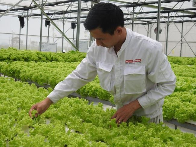 Bắc Ninh phát triển nông nghiệp:  Đột phá nhờ ứng dụng công nghệ cao vào sản xuất - Ảnh 3.