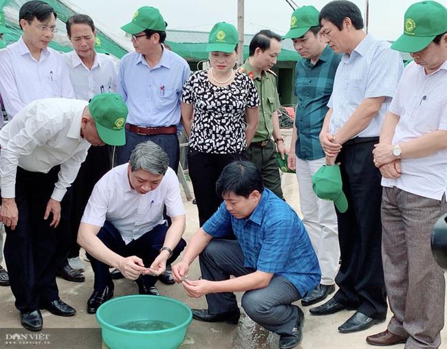 Tân Phó Chủ tịch UBND tỉnh Thanh Hóa Lê Đức Giang có nhiều đóng góp cho ngành nông nghiệp - Ảnh 4.