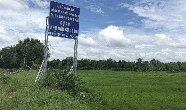 Bộ Công An đang điều tra xử lý vụ bà Trần Uyên Phương bị tố cho vay nặng lãi - Ảnh 1.
