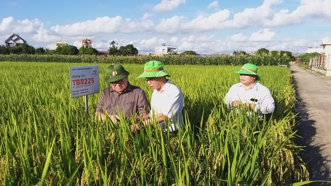 Anh hùng Lao động- doanh nhân Trần Mạnh Báo và mong mỏi truyền cảm hứng cho  những bạn trẻ chưa thật yêu mến nông nghiệp