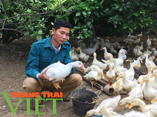 Hoà Bình: Phát triển nông nghiệp thông minh và sản xuất an toàn theo chuỗi - Ảnh 5.