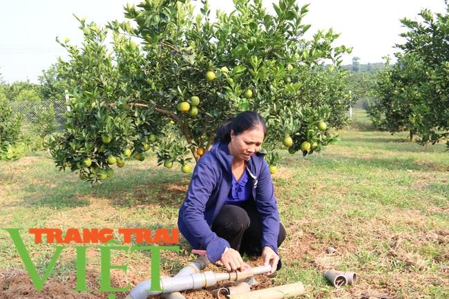 Hoà Bình: Phát triển nông nghiệp thông minh và sản xuất an toàn theo chuỗi - Ảnh 3.