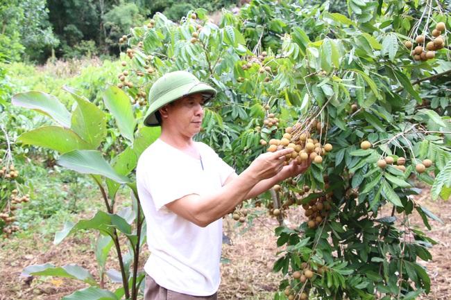 Nông dân Sơn La tích cực tham gia xây dựng nông thôn mới - Ảnh 3.