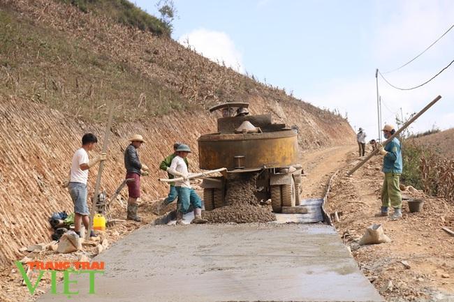 Hội Nông dân Thuận Châu tích cực xây dựng nông thôn mới - Ảnh 1.