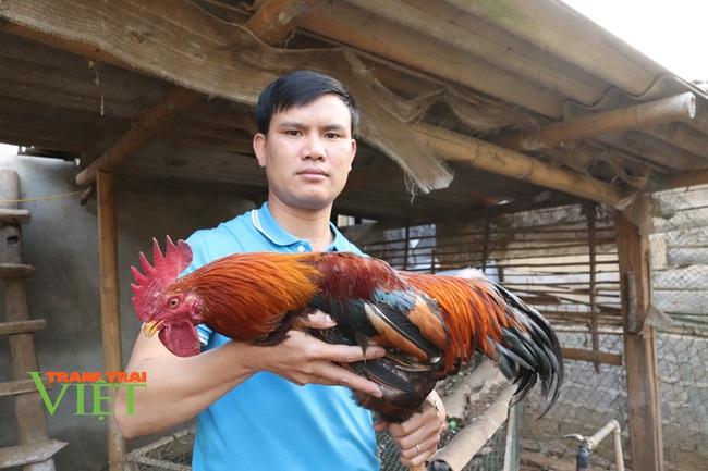 Hội Nông dân Thuận Châu tích cực xây dựng nông thôn mới - Ảnh 4.