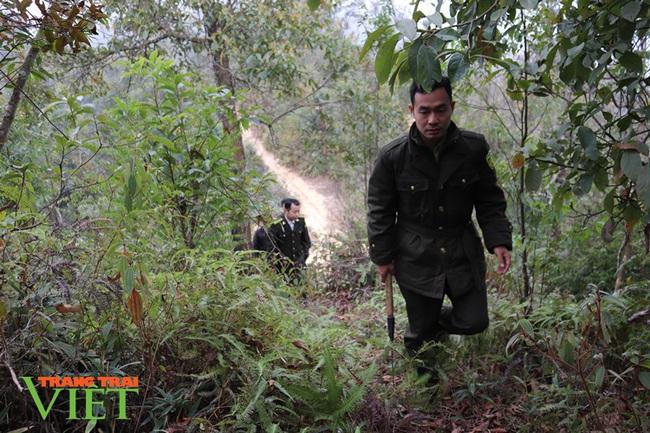 Bản Lầm không lầm trong công tác quản lý, bảo vệ rừng - Ảnh 2.