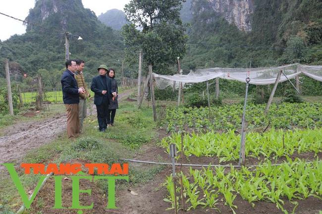 Hoà Bình: Phát triển nông nghiệp thông minh và sản xuất an toàn theo chuỗi - Ảnh 6.