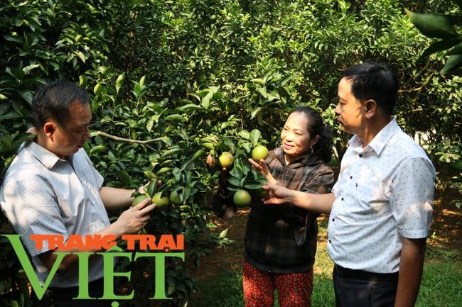 Hoà Bình: Phát triển nông nghiệp thông minh và sản xuất an toàn theo chuỗi - Ảnh 4.