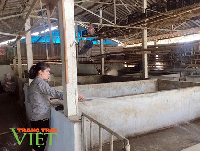 Điện Biên: Nông dân Thanh Yên giữ vững tiêu chí môi trường trong xây dựng NTM - Ảnh 4.