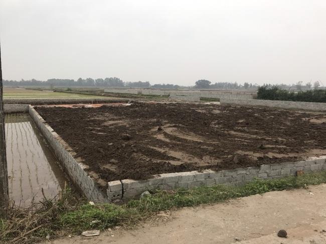 Vụ hàng ngàn m2 đất ruộng bị 'biến' thành nhà ở xã Yên Phúc (Ý Yên, Nam Định): Sẽ thanh tra toàn diện - Ảnh 2.