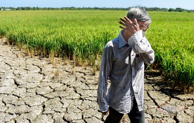 Trung Quốc bị nghi giữ nước gây hạn, dự báo năng suất lúa gạo Việt Nam giảm hơn 3% - Ảnh 1.