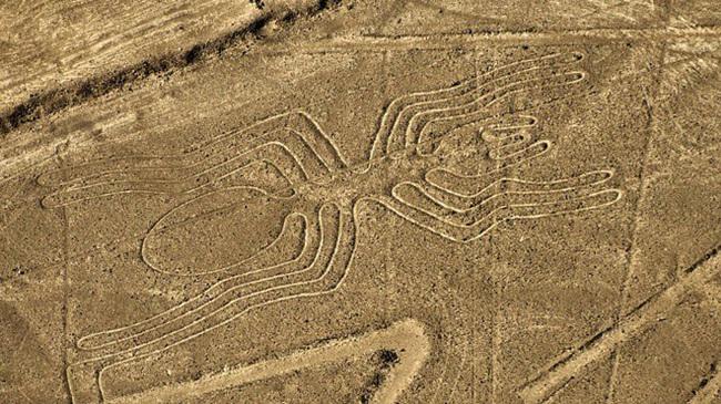 """Bí mật về """"đường băng của người ngoài hành tinh"""" ở Nam Mỹ - Ảnh 1."""