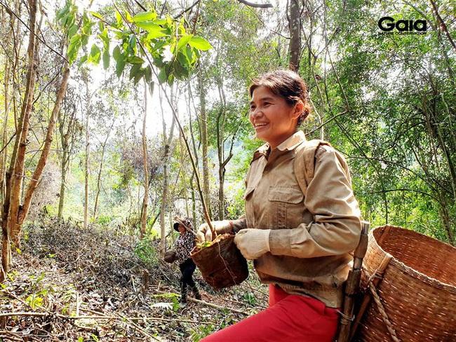Trồng 2.000 cây gỗ lớn nhân Ngày của Mẹ - Ảnh 2.